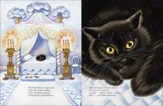 Белый дом и черный кот